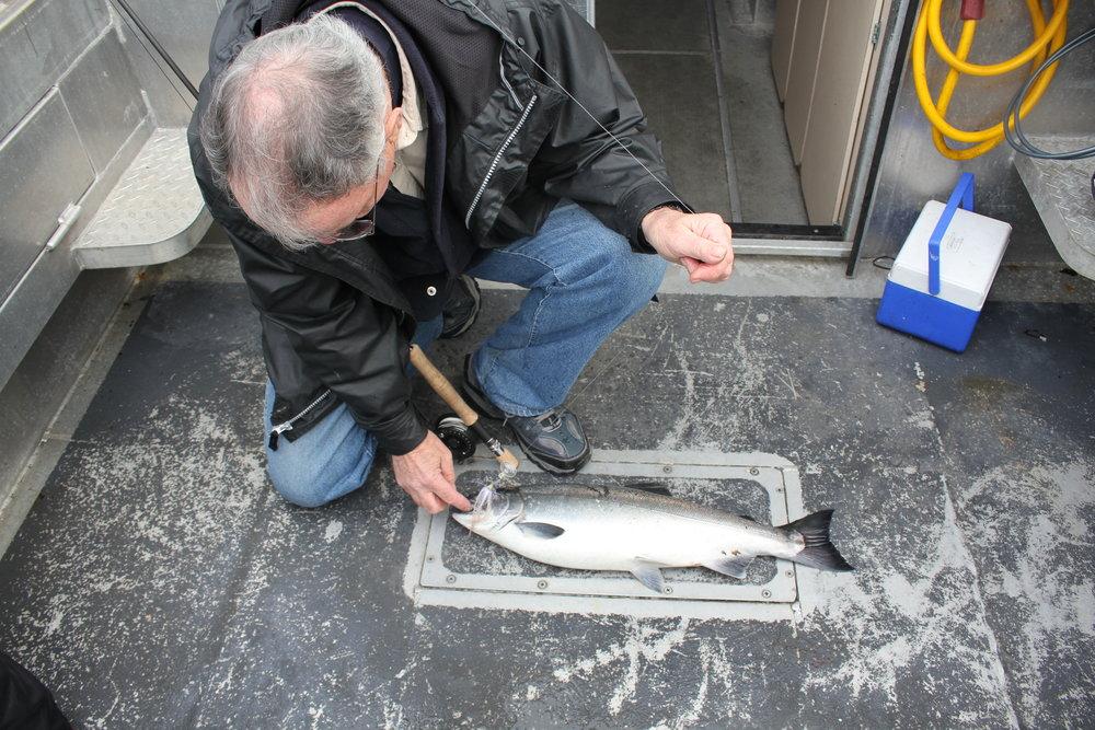 Author & Silver Salmon