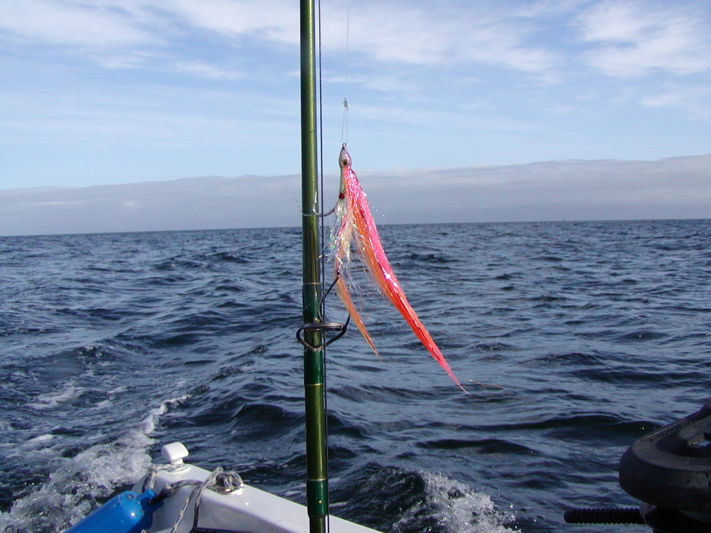 Pink Orange on rod A.JPG