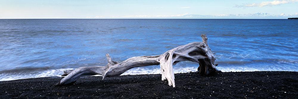 Kua Bay driftwood, Big Island 2014