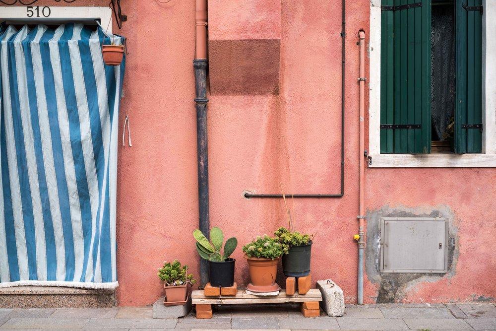 Burano color palette    Leica M10 1/180s F2 ISO100