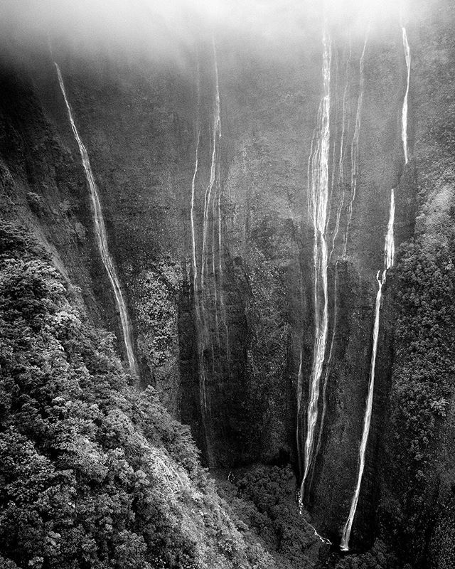 1/5 of my submissions for the 2018 Monochrome Awards.  Shot from @maunaloahelicopters R-44 in the Pu'u O Umi Natural Area Reserve.  Had the @leicacamerausa on board a #kenlabgyro to keep the image sharp!  Keep an eye out for the rest of my submissions in the next few weeks.  #monochrome_lovers #leica #monochromeawards