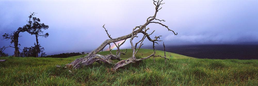 Pu'u Wa'awa'a, Big Island 2018