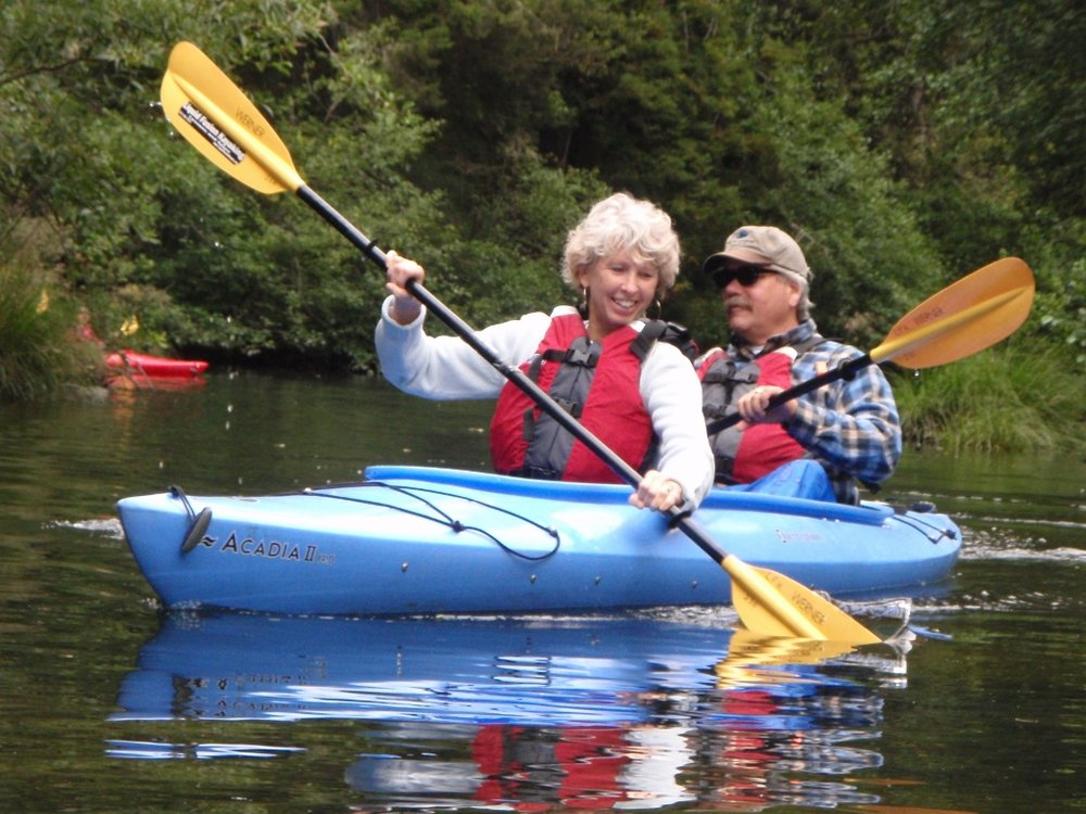 Wildlife Watching Kayak Tours