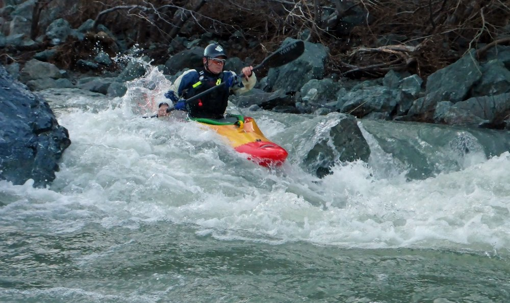 Willy at Take-out rapid (1024x609).jpg