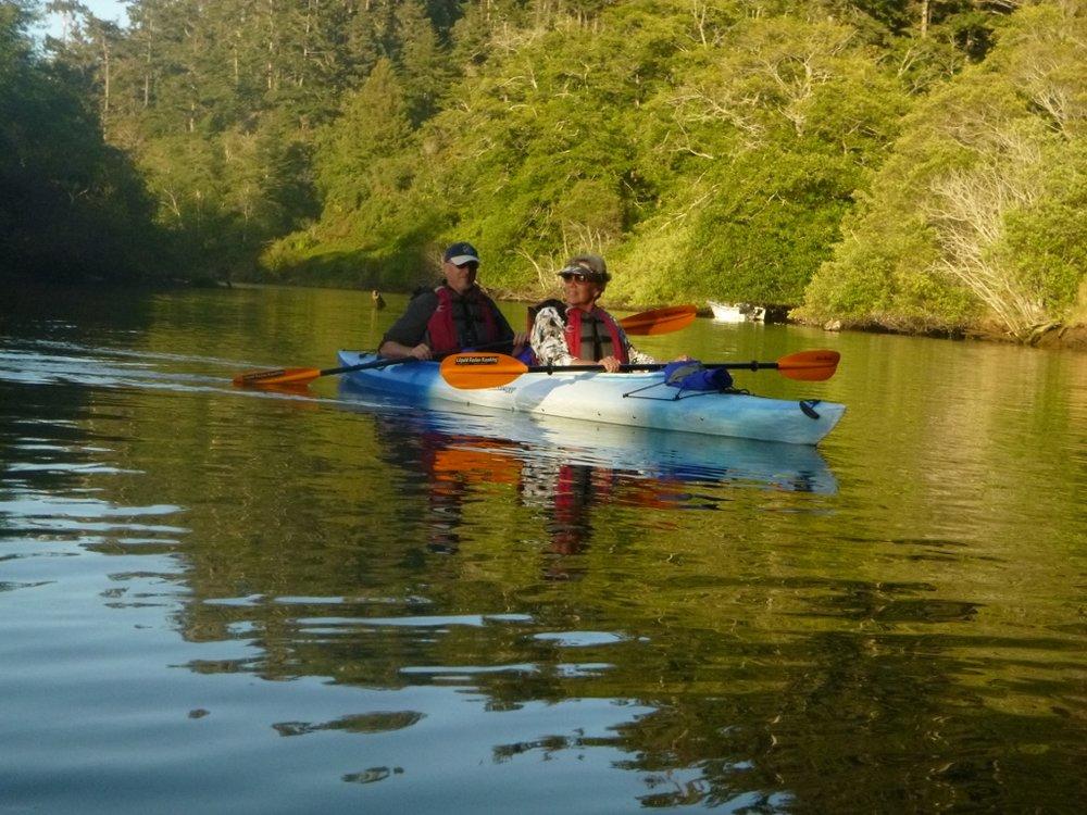 Evening wildlife watching kayak tour