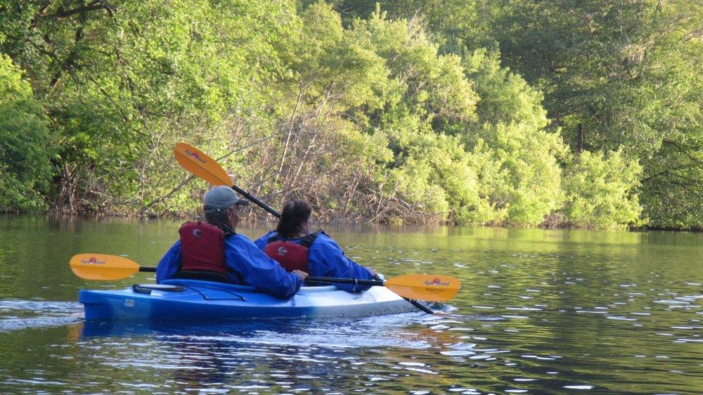 Mendocino Wildlife Kayak Tour