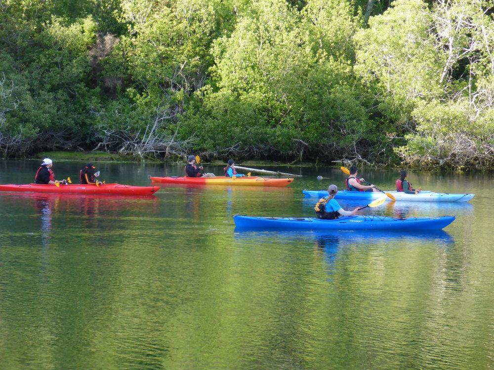 Mendocino Kayak Tour.JPG
