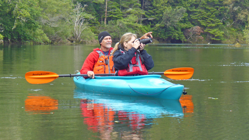 Kayak birding on the Noyo River