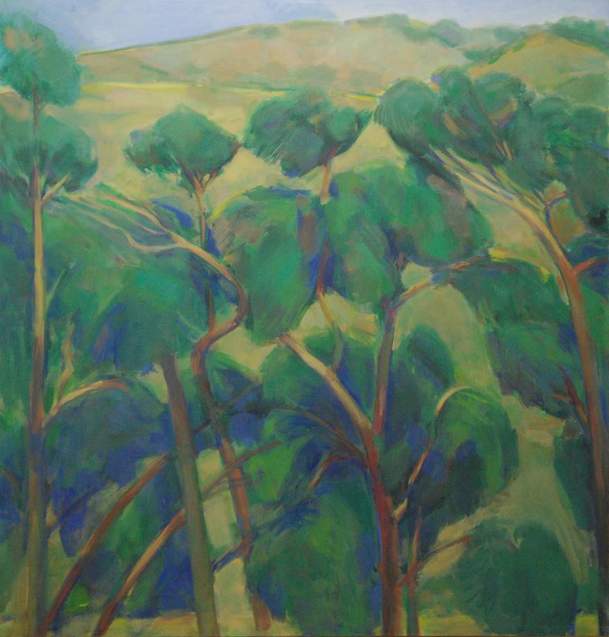 16. Eucalyptus Row and Coast Range.web.jpg