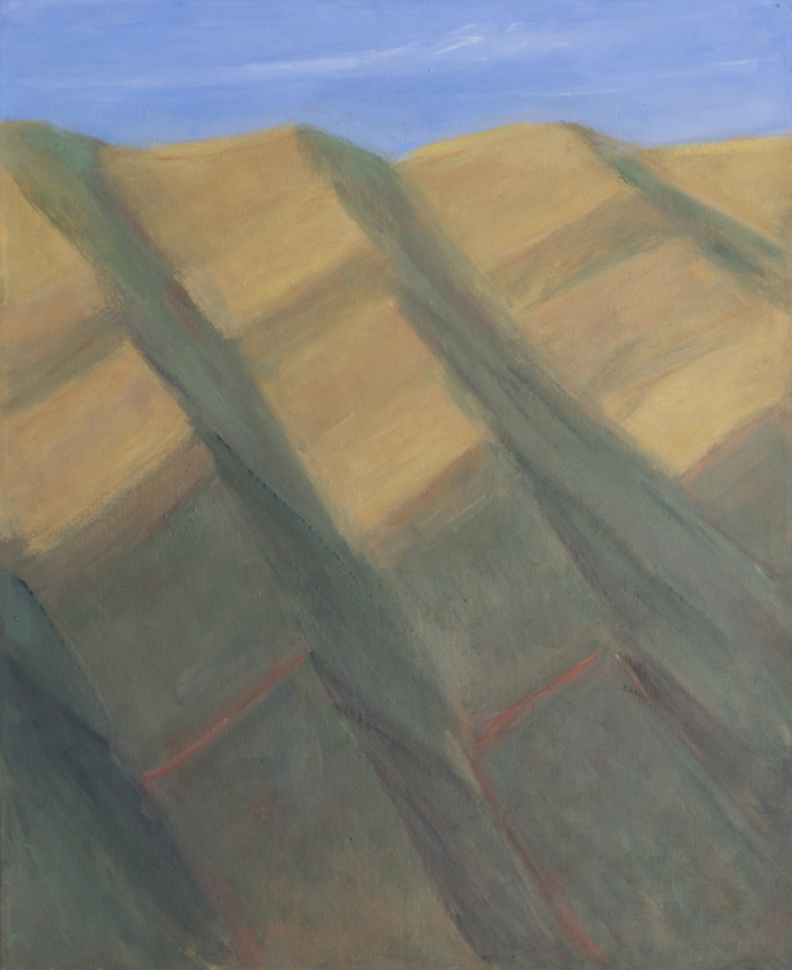 176.Canyons and Ridges Covered by Dry Grass and (below) Chaparral, 39x32, 2010.web.jpg