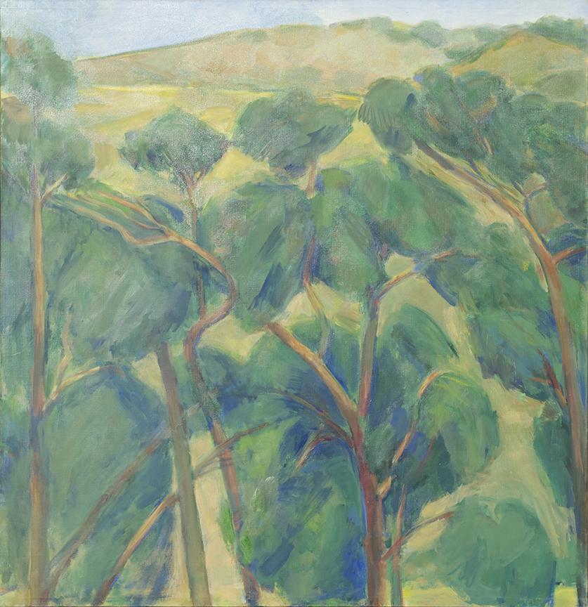 16_EucalyptusRowAndCoastRange_50x48_web.jpg