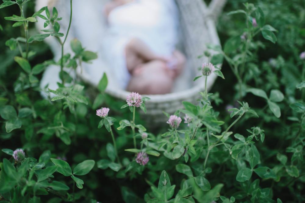 newborn-103.jpg
