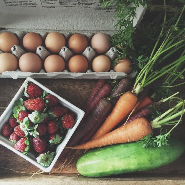 mcallen farmer's market -