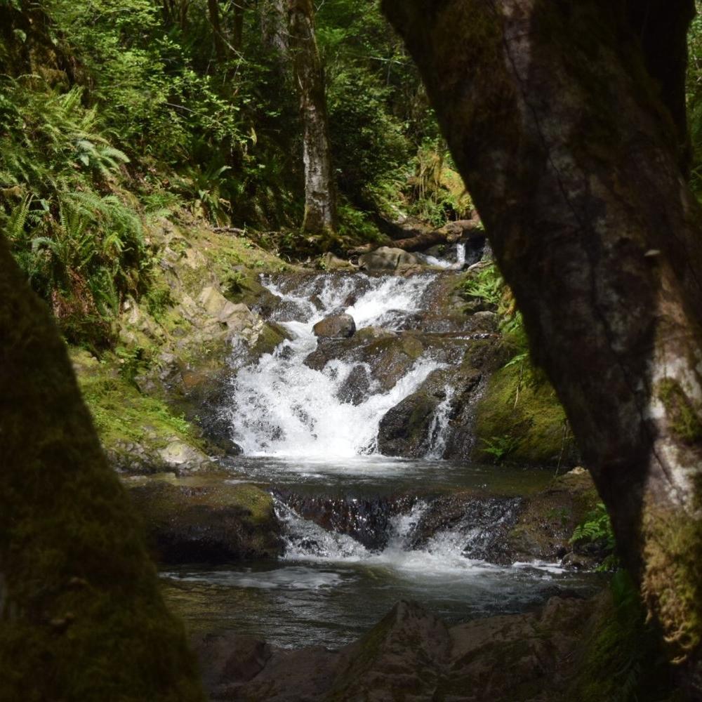 green mountain: gold creek trail -