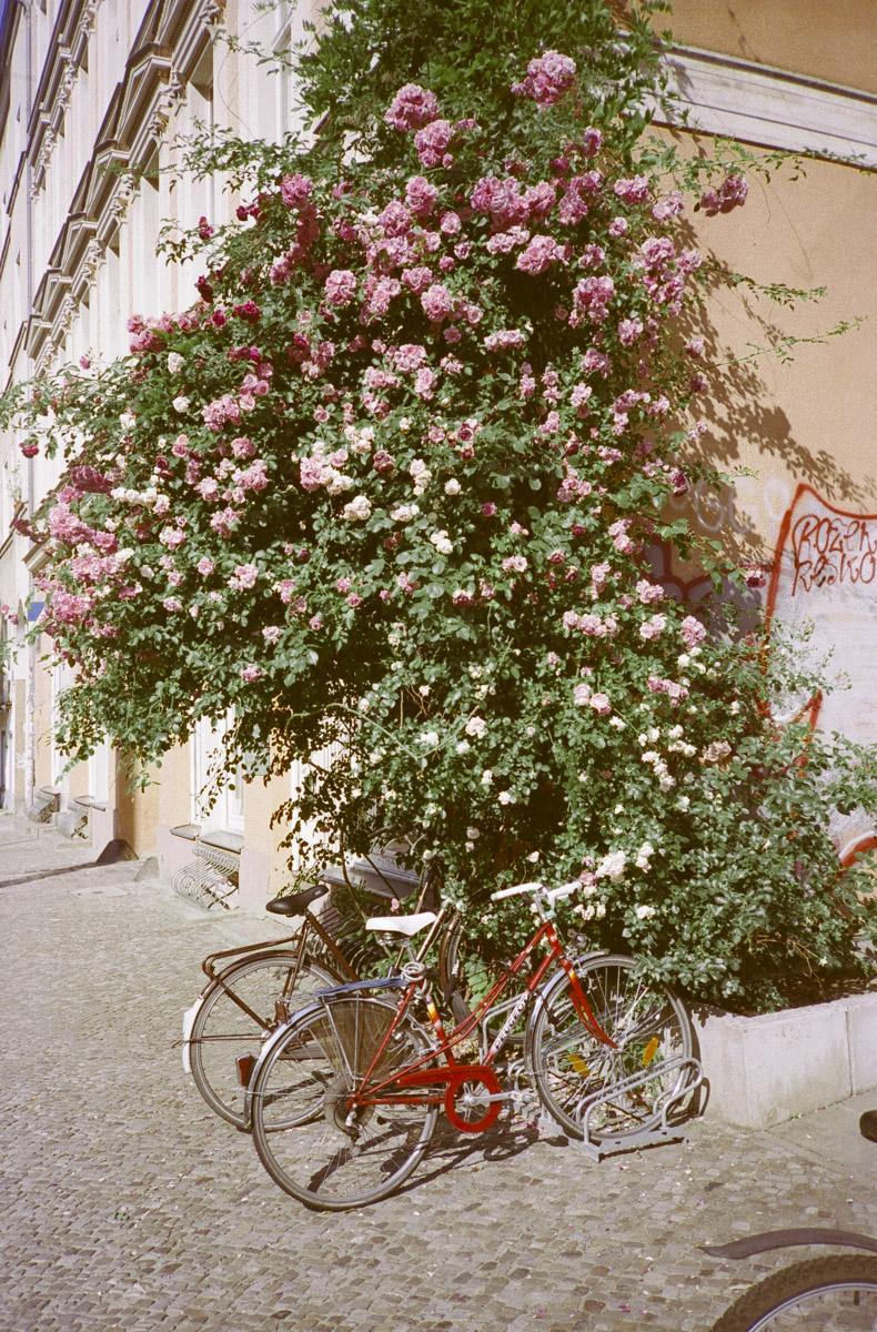 berlin bikes_web-064.jpg