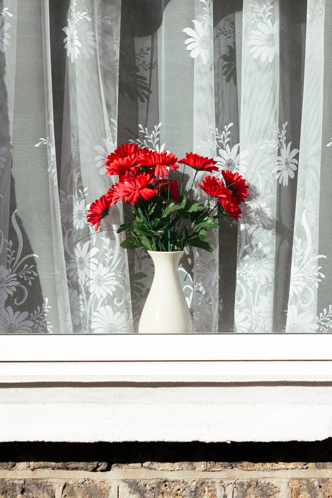 6de4008ece23ea06-hackneyflowers2-28.jpg