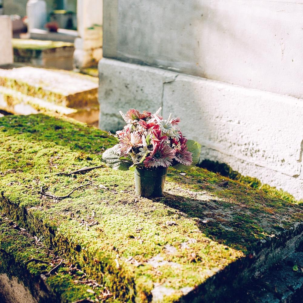 bbe183ba0e2861a0-cemeteryflowersweb-70890007.jpg