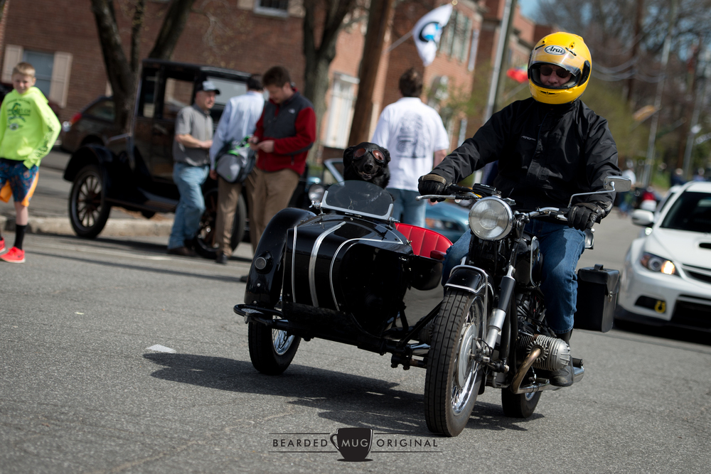 As happy as a...dog in a sidecar.