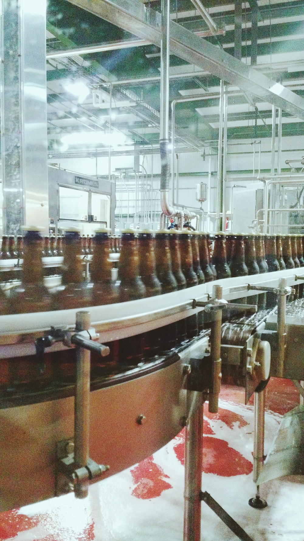 wisconsin's sweet nectar being bottled