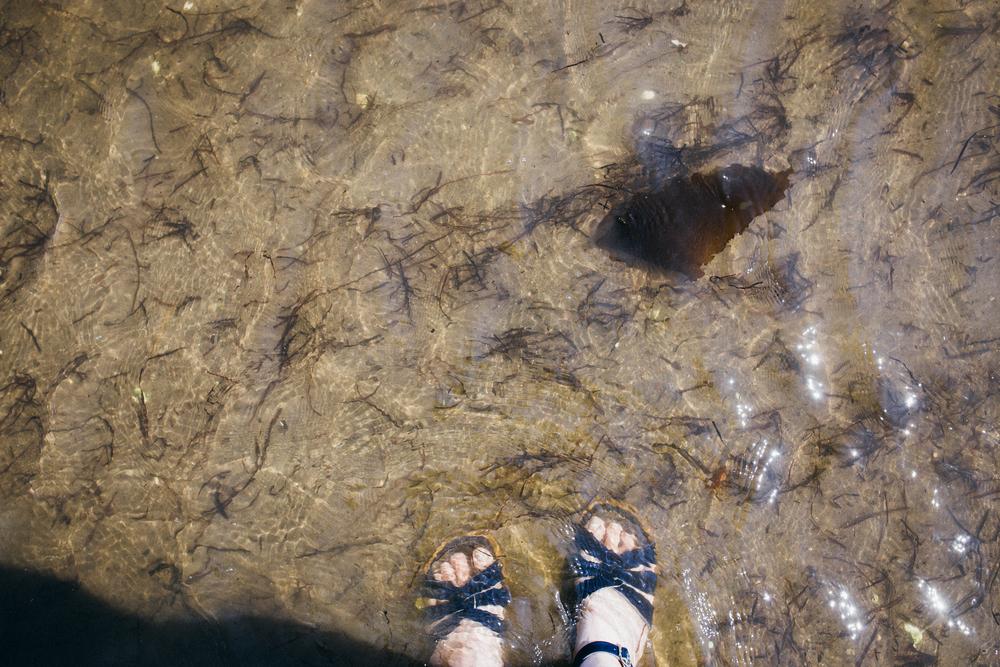 summer201633.jpg