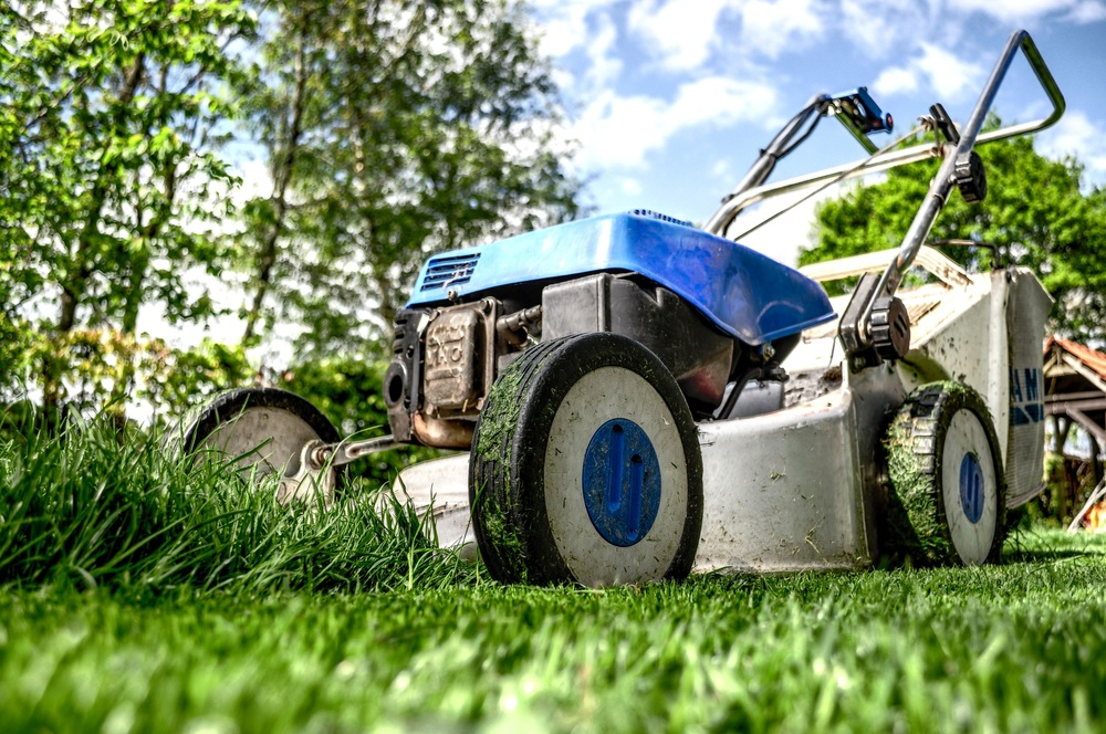 "Mowing Heights keep mowing heights close to 3""+ during warm months. This keeps the soil temperatures cooler, less stress on the turf, and increases a healthier root system. Cut the top 1/3 of the blades to keep deep green color."