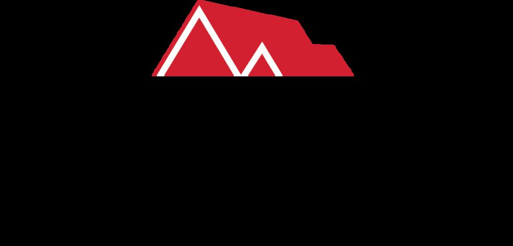 Sartipi Team Logo.png