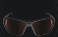 REV Ballistic Training Glasses