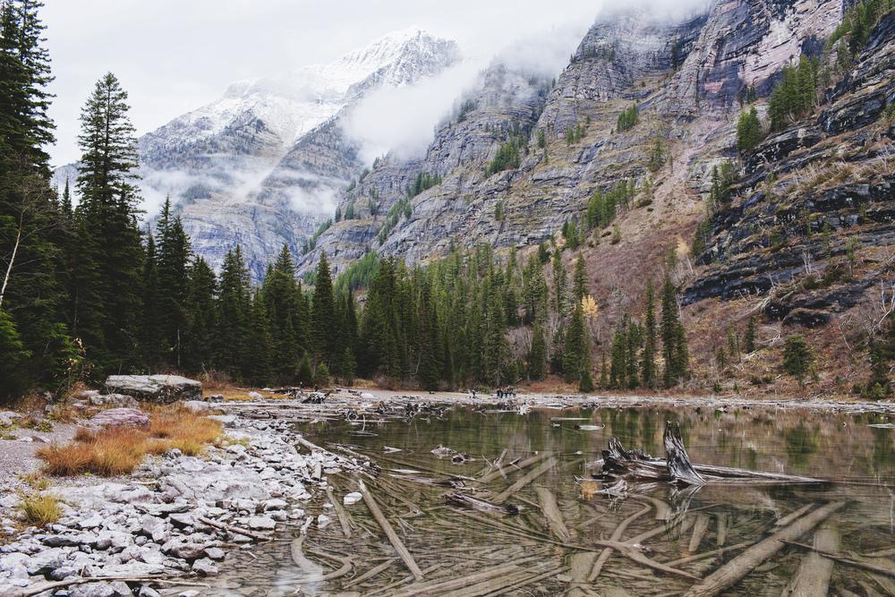 2014_Montana_+Glacier-6337.jpg
