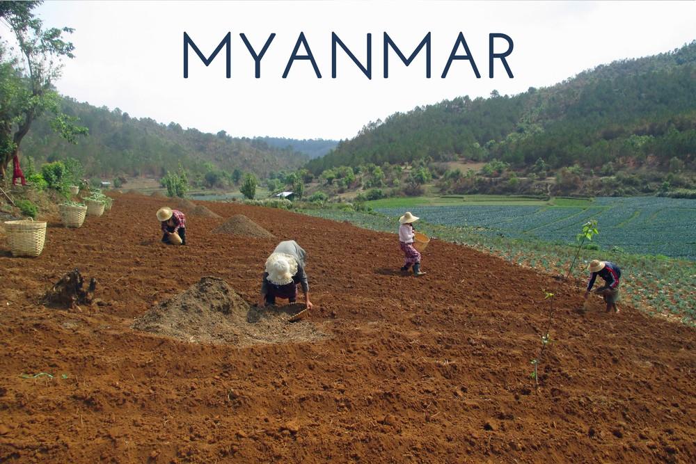 Myanmar Block.jpg