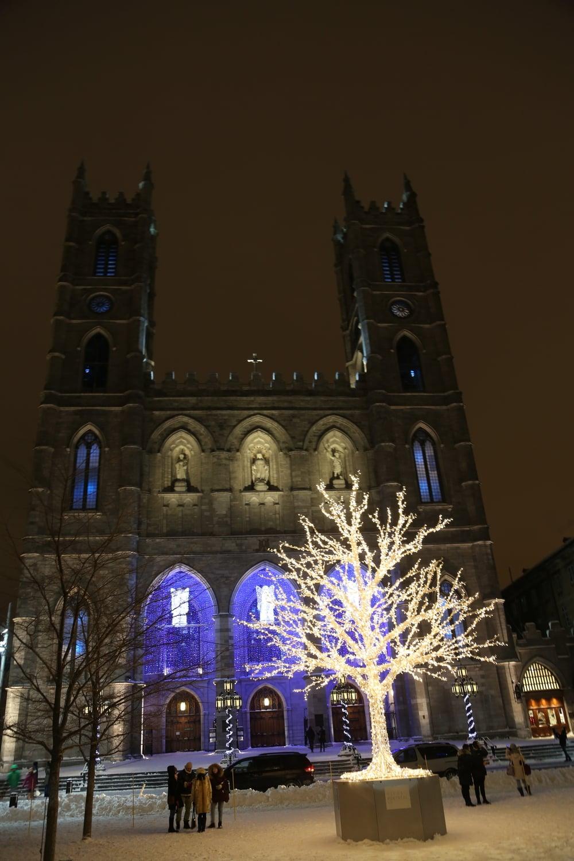 Notre-Dame Basilica Square