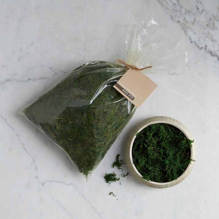 green-moss-o.jpg