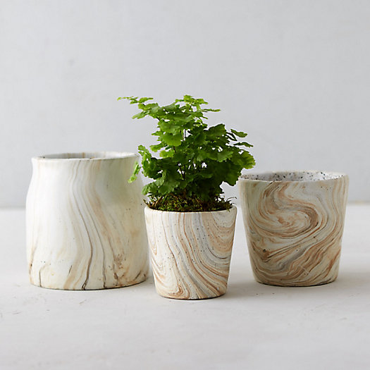 Marbled Planter