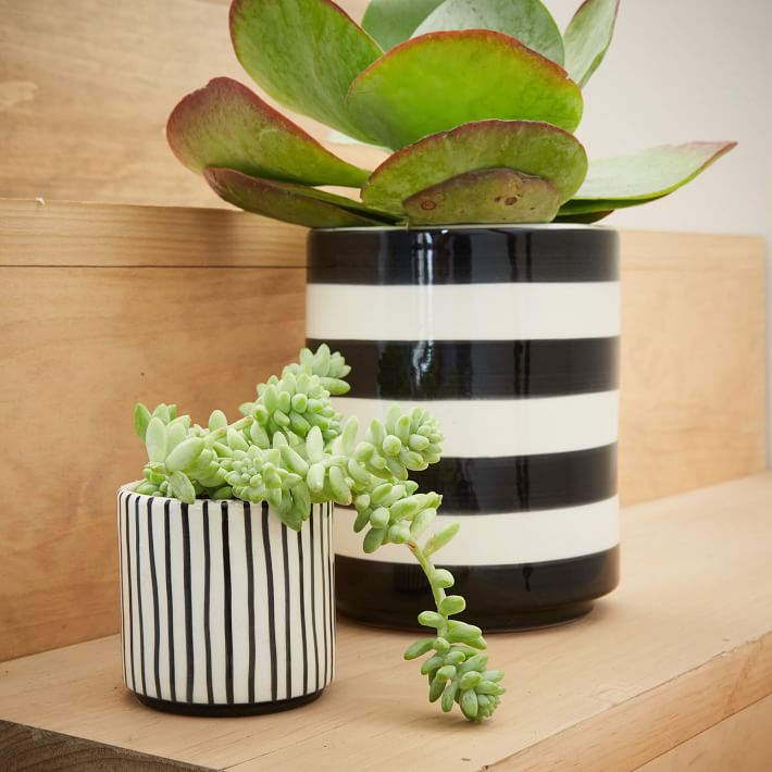 Striped Cache Pot