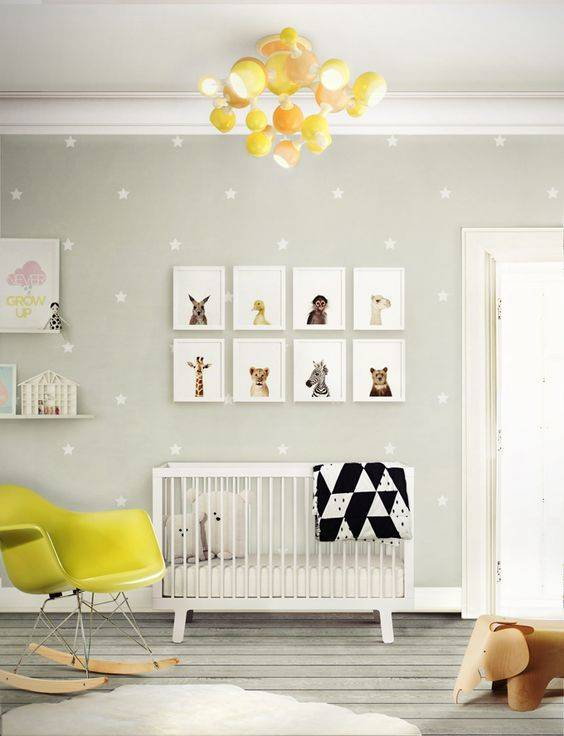 Yellow Accent Nursery