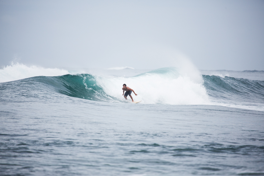 surf-8.jpg