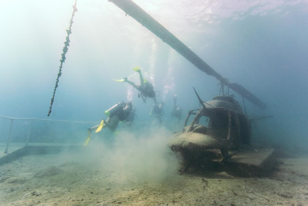 Dive-4.jpg