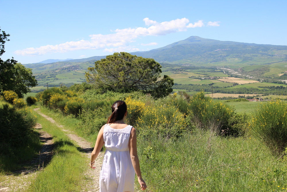 Val D'Orcia The province of Siena in Tuscany is home the beautiful green valley known as Val D'Orcia