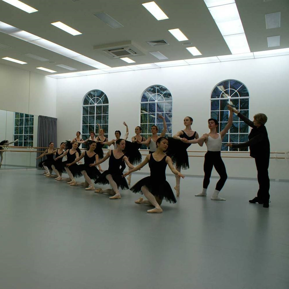 school A well established ballet institution with a strong reputation for high standards in training students to professional level.