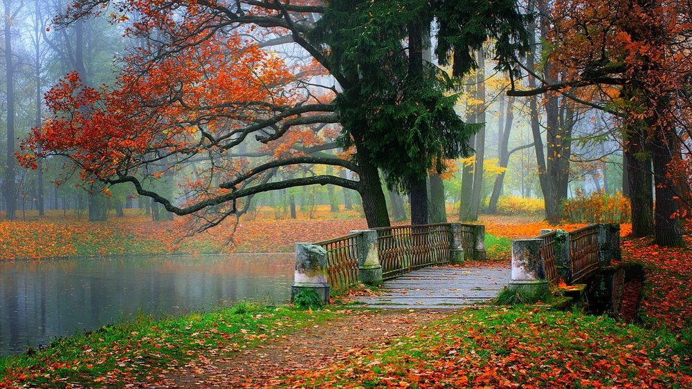 autumn-hd-landscape-wallpapers-beauty-tree-bridge-tablet-fresh-mobile-wallpapers-nature-lake-landscapedownload-leaves.jpg