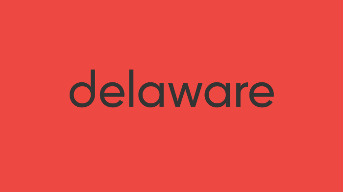delaware-digital-asset-management