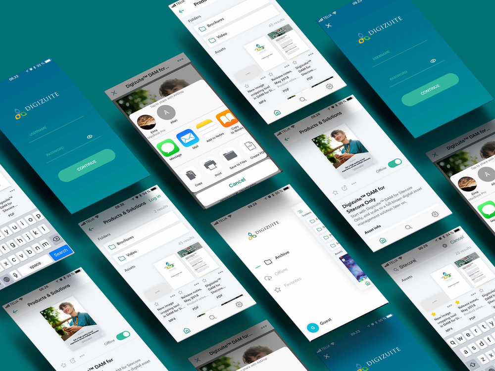 DAM Software Mobile App I DIgizuiet