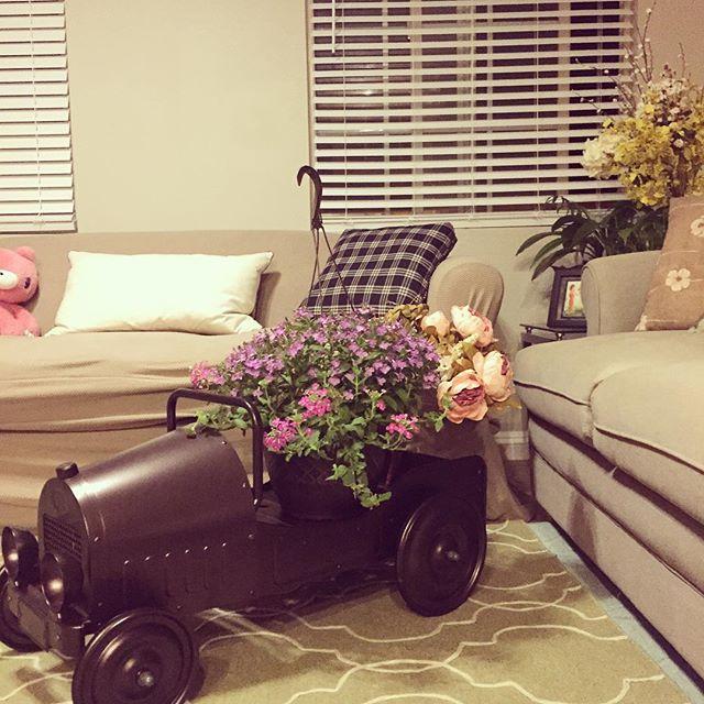 Home sweet home 💛 available online #homedecor #flowers #planter #pedalcar #garden #blossom #roomdecor #stampedsteel #carplanter #imagination #collectible #rusticdecor #vintagecarplanter