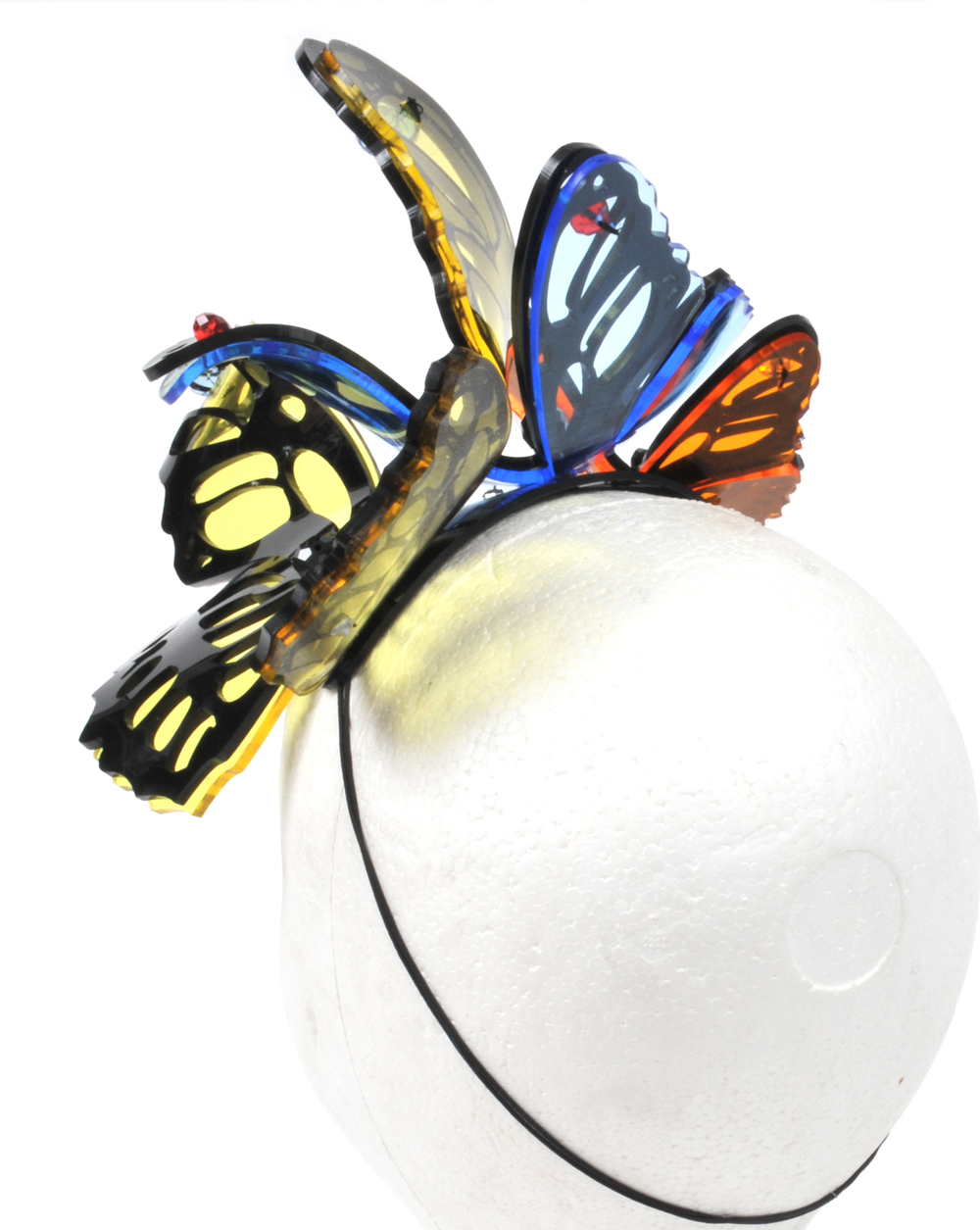 paula-walden-verbatim-butterfly.jpg