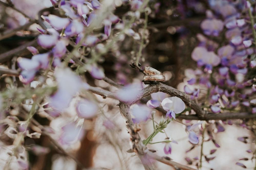 ringfoto im blühenden baum hochzeit köln pfefferschote lövenich.jpg