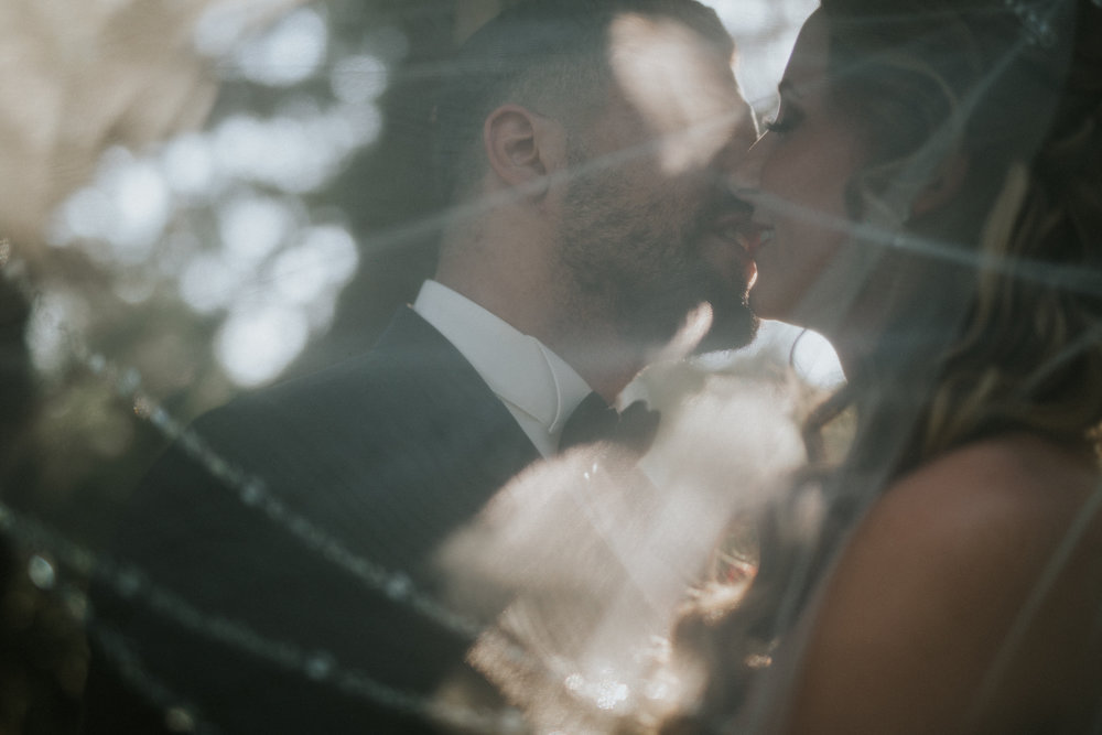 Brautpaar küsst sich hinter dem Schleier - romantische Momentaufnahme im botanischen Garten in Wuppertal