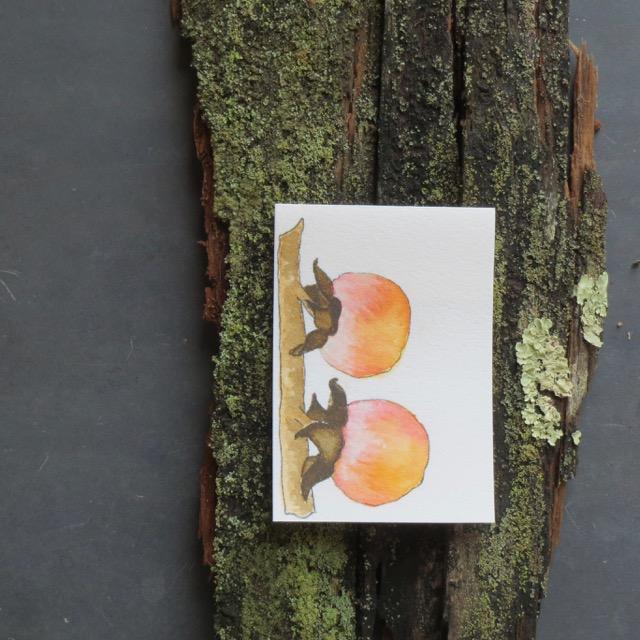 a.bark - 4.jpg