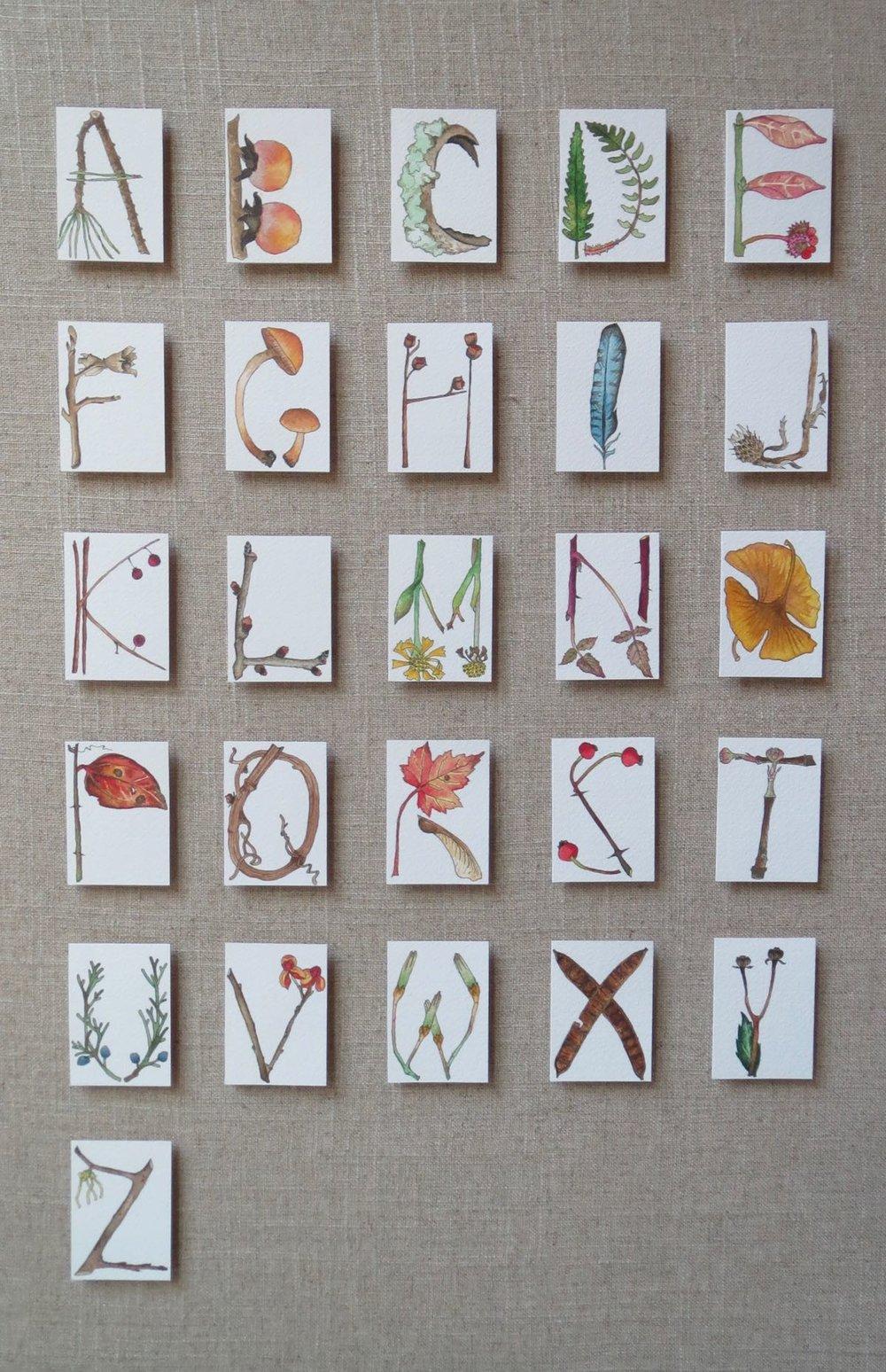 Fall Alphabet 2015