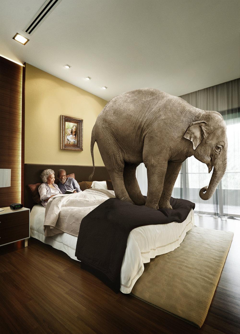 elephant_bedroom@465.jpg