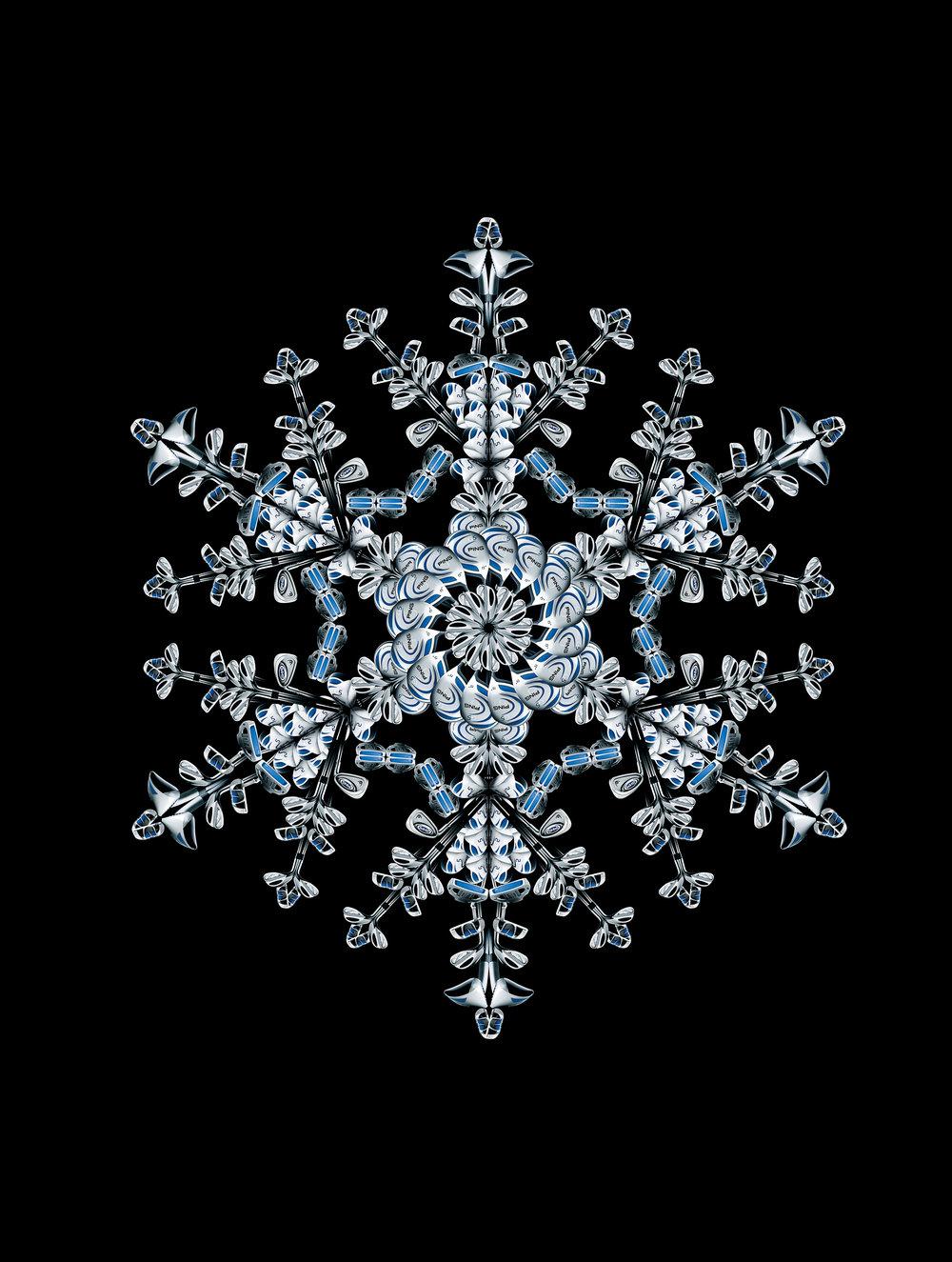 ping_snowflake@465.jpg