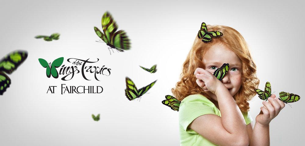 butterflies_green@465.jpg